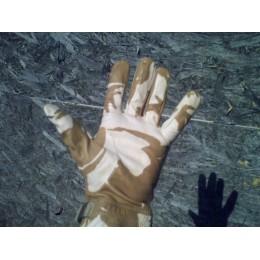 DDPM Gloves